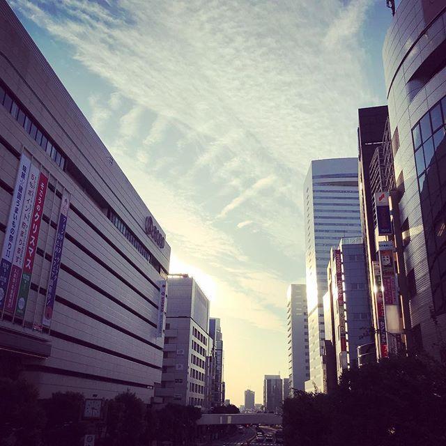 出張。やはり関東は暖かいなぁ。 (Instagram)