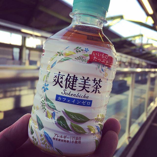 今年最後の江戸の旅 (Instagram)