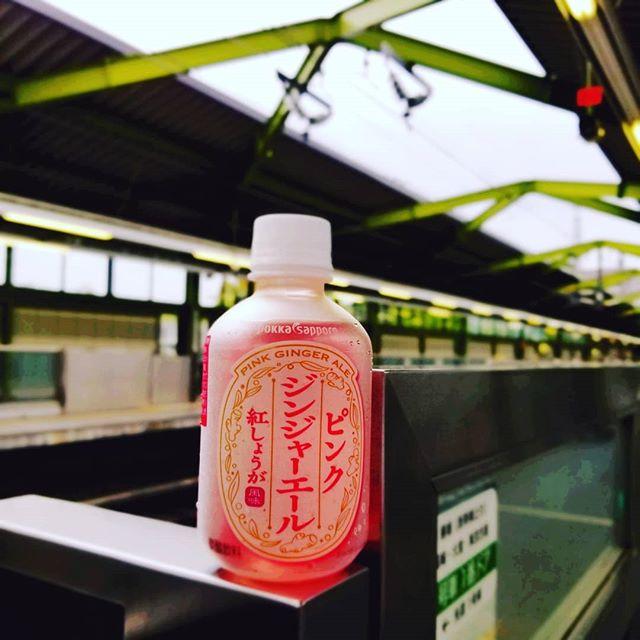 お江戸へ。湿度が高いので熱帯雨林にいる気分。飲み物でスッキリしたい。 (Instagram)
