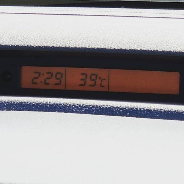 うちの車 インフルエンザかな (Instagram)